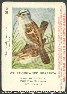 1914 Game Of Wild Birds Advertising Sample Playing Card