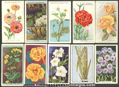 (10) Old Flower Tobacco / Cigarette Premium Trading Cards