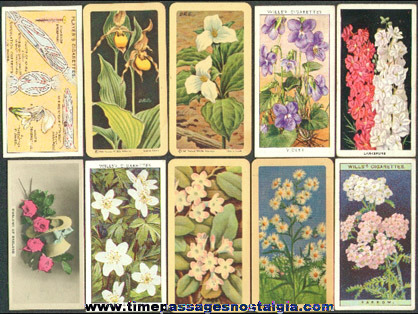 (10) Old Flower Tobacco / Cigarette and Tea Premium Trading Cards
