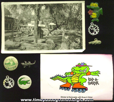 (9) Alligator Related Items