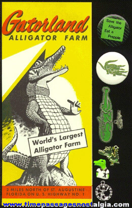 (8) Alligator Related Items