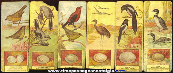(16) Old PATTERSON CANDY COMPANY Advertising Premium Bird Cards