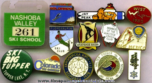 (13) Different Advertising Skiing Pins