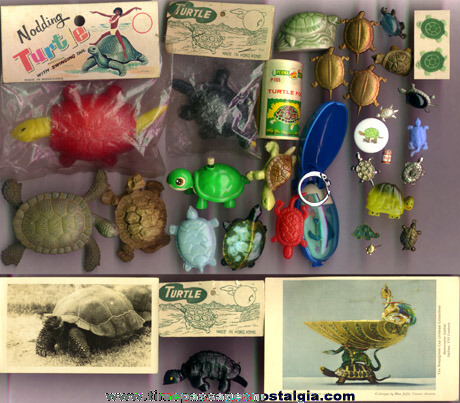 (33) Small Turtle Related Items