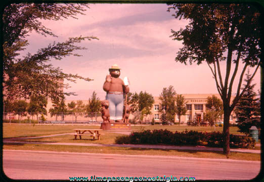 Old Smokey Bear Statue Photograph Slide