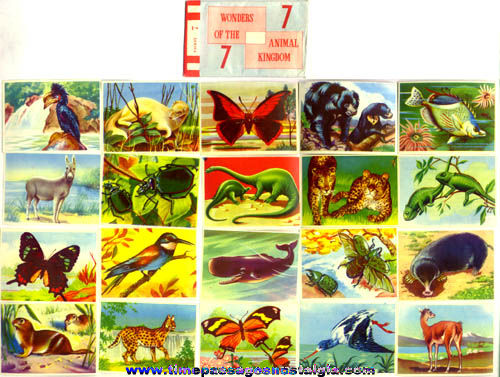 Old Packet Of (20) Colorful Unused Animal Kingdom Stamps