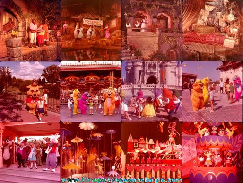(24) Disney World Souvenir Color Photograph Slides