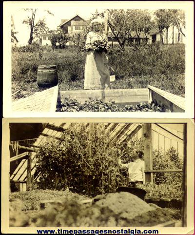 (2) 1927 Garden / Gardening Photographs