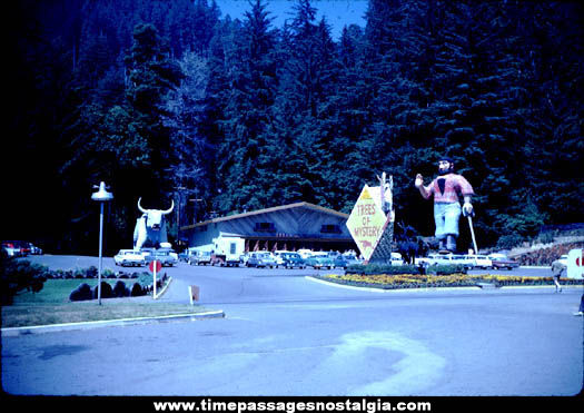 1962 Trees Of Mystery Paul Bunyan & Blue Entance Photograph Slide