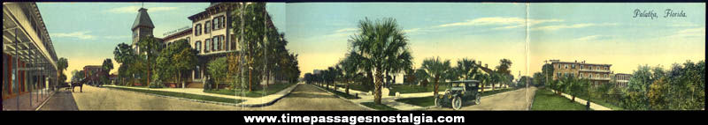 Old Palatka Florida Advertising Panorama Post Card