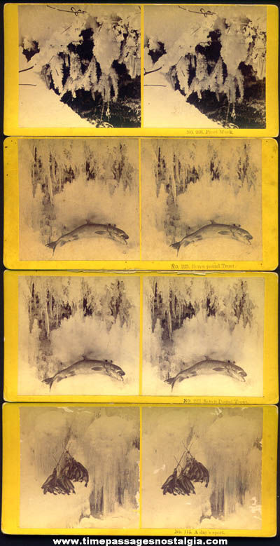 (8) Old Stereoscopic or Stereoview Photograph Cards