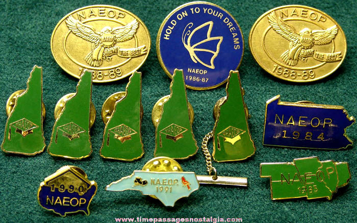 (12) National Association of Educational Office Professionals Membership Pins