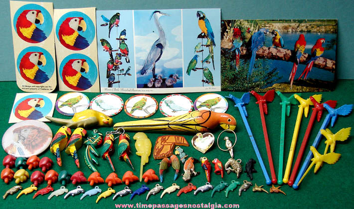 (72) Colorful Old Parrot Bird Related Items