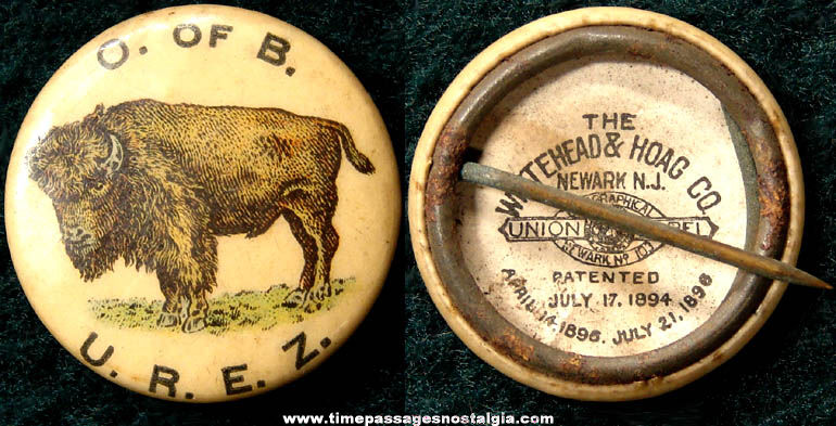 1896 Buffalo or Bison Celluloid Pin Back Button