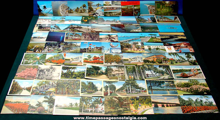 (72) State of Florida Advertising & Souvenir Post Cards