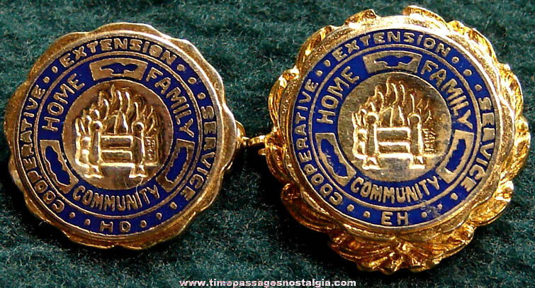 (2) Enameled Cooperative Extension Service Advertising Pins