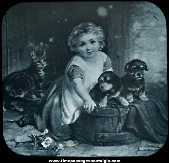 Old Child With Puppies and Cat Magic Lantern Photograph Slide