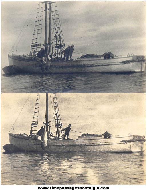(2) Old Unused Tuna Fishermen Fishing Real Photo Post Cards