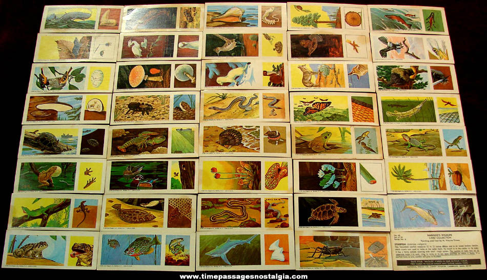 (40) Different ©1968 Sugar Daddy Candy Nabisco's Wildlife Card Collection Trading Cards