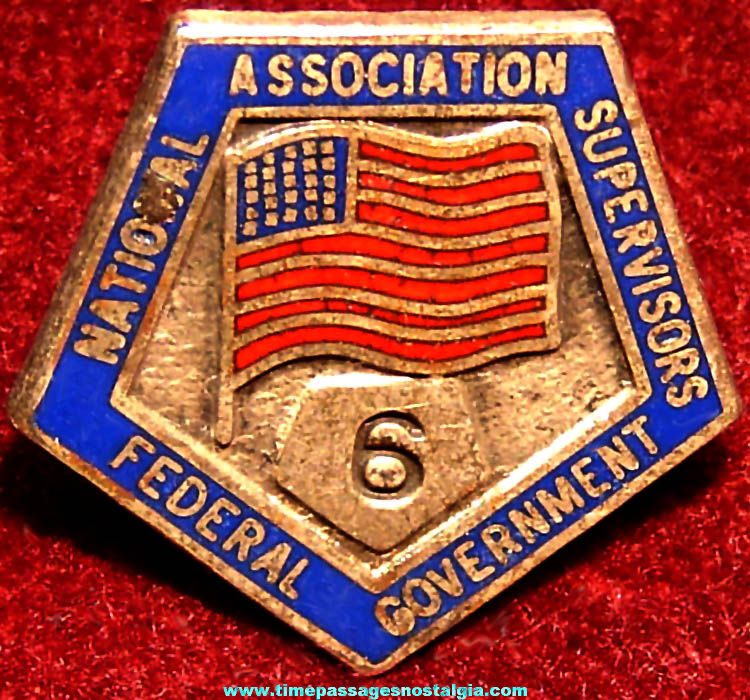 Old Enameled National Association Federal Government Supervisors Six Year Flag Pin