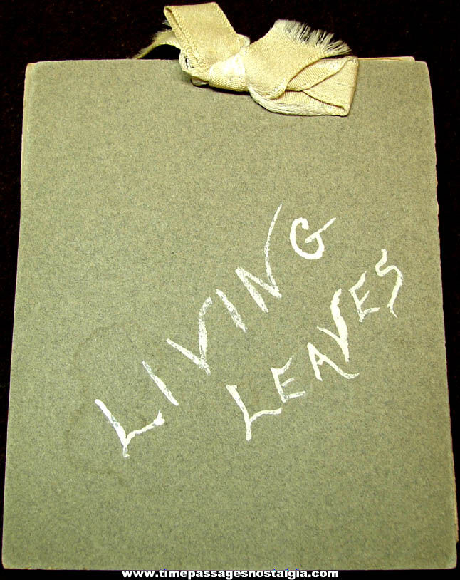 Small Old Living Leaves Religious Pressed Leaf Scrap Book