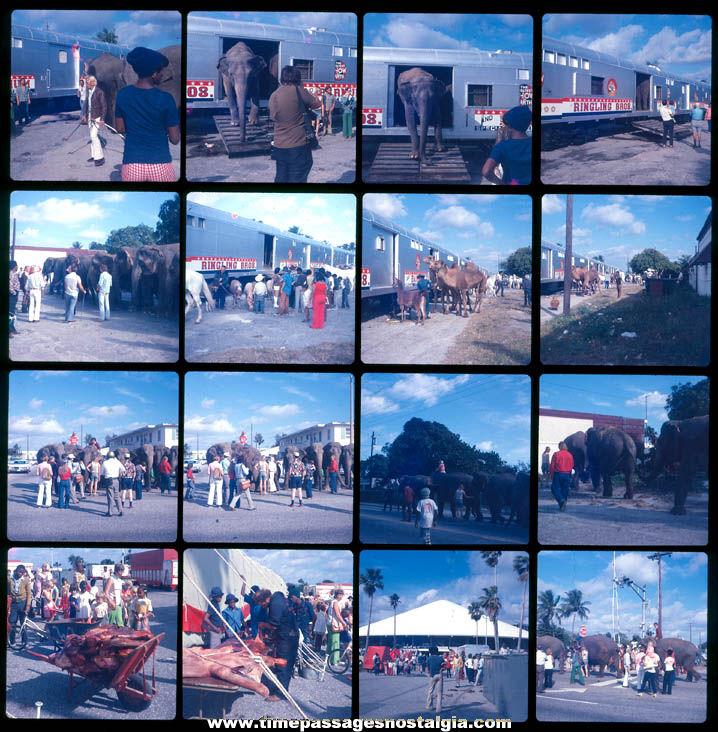 (16) 1976 Ringling Bros Barnum & Bailey Circus Animal Train Photograph Slides