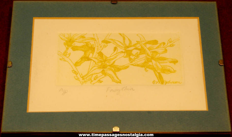 Signed Dated Matted & Framed Forsythia Flower Intaglio Etching Artist's Proof Floral Art Print